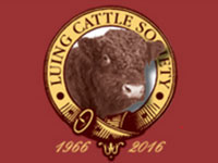 Luing Cattle Society